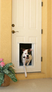 Plexidor Electronic Pet Doors