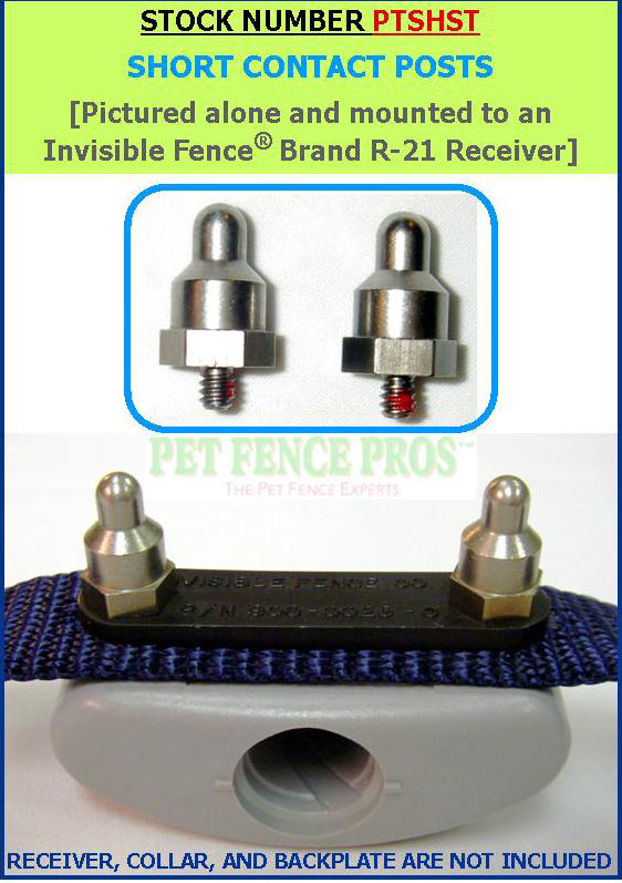 Wireless Invisible Fence Amazing Wellturn Pet Hot Sale
